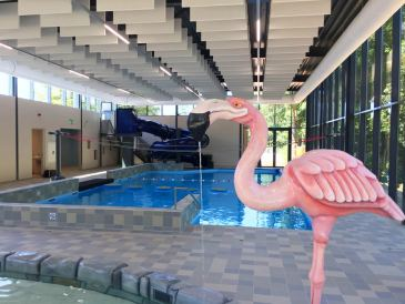 Zwembad Dormio Resort Maastricht